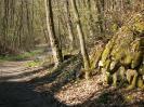 Chemin dans le Bois Persan